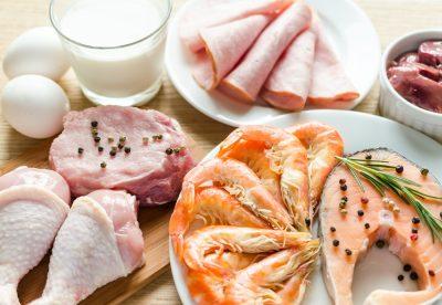 Ingredients for protein diet