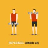 Biceps øvelser – 10+ effektive øvelser med og uden håndvægte